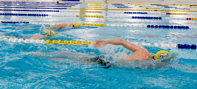 Free Swims for Staff & Faculty