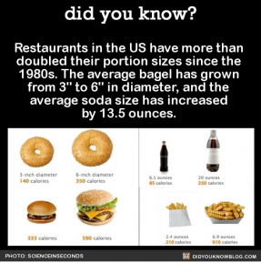 Did you know about US Portion Sizes?